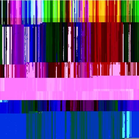 DSC_0558 - Copy (2)